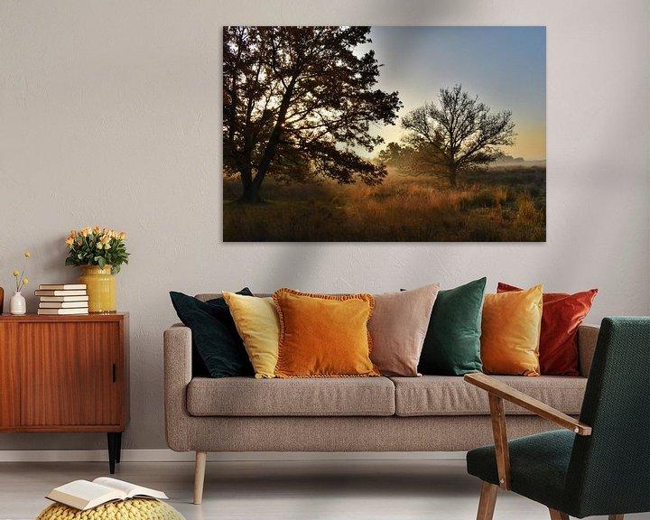 Beispiel: Goldener Herbst von Stefan Wiebing Photography