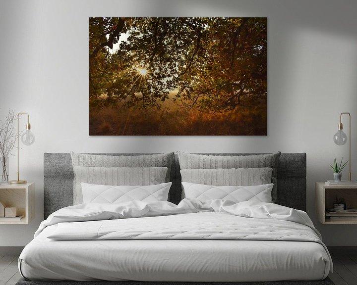 Beispiel: Sonniger und bunter Herbst von Stefan Wiebing Photography