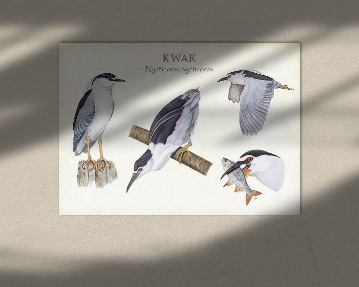 Beispiel: Kwak von Jasper de Ruiter