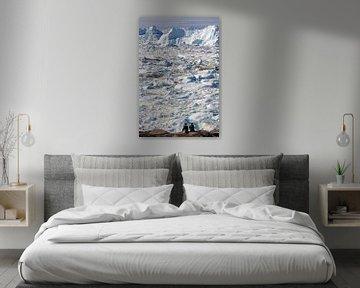 Zicht op de Icefjord van Reinhard  Pantke