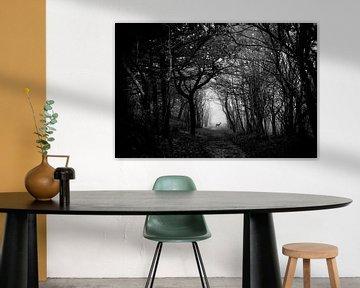 Hirsche im Wald von Yana Spiridonova