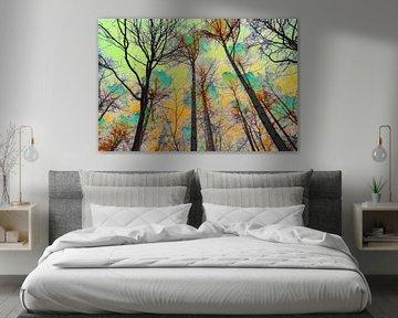 """""""Forest Sky"""" ; sur Ronnie Reul"""