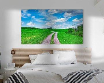 Wanderweg Dünen Texel von Digital Art Nederland
