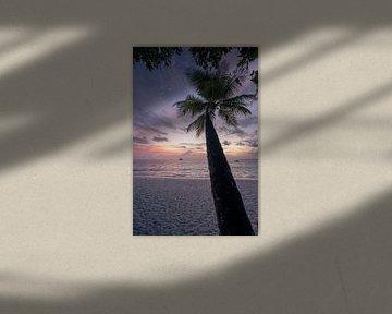 Coucher de soleil sur les Maldives sur Michiel Dros