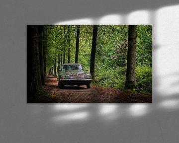 Citroën DS 23 Pallas van Wim Schuurmans
