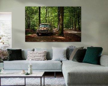 Citroën DS 23 Pallas kleur van Wim Schuurmans