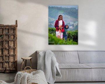 Portret van locals in de theevelden van Nuwara Eliya van Teun Janssen
