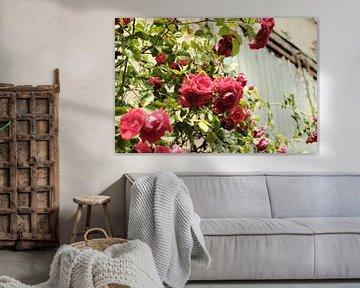 Vintage Rosen auf grünem Hintergrund | Straßenfotografie von Diana van Neck Photography