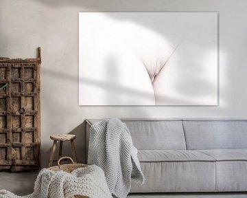Künstlerischer Akt einer Vagina in High Key Farbe von Art By Dominic