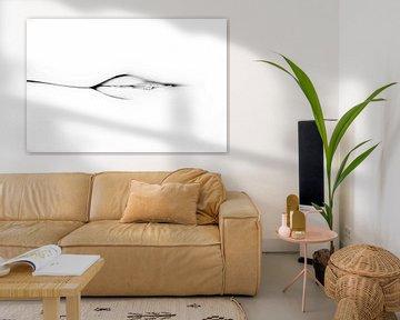 Künstlerischer Akt einer Vagina und eines Gesäßes in hohem Kontrast von Art By Dominic