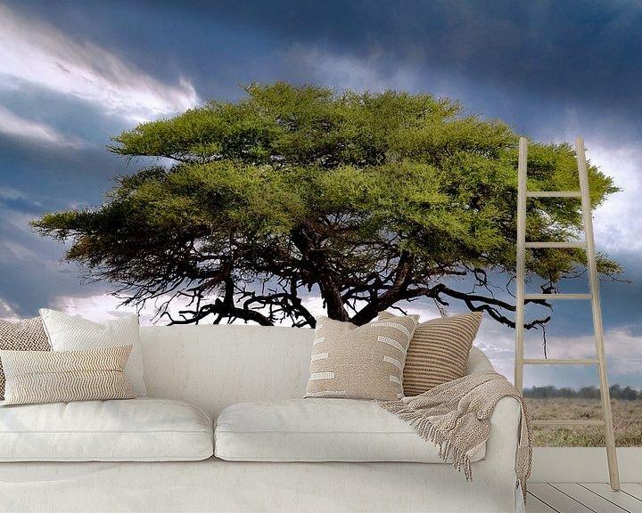 Beispiel fototapete: Baum im Etosha Nationalpark, Namibia von W. Woyke