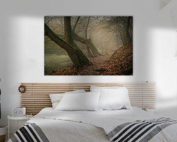 Der neblige Wald von Bert Broekhuis