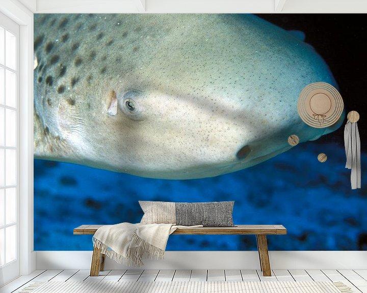 Beispiel fototapete: Leopardenhai von Alexander Schulz