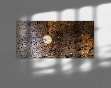 Asteroidenfeld - Panthera Tigris von Petrus Peels