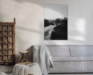 Le Lemelerberg près de Lemele, un paysage accidenté en noir et blanc | Photographie en plein air sur Holly Klein Oonk