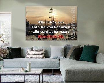 Alle foto's van Foto Ko van Leeuwen zijn verplaatst naar Wandfoto.NL