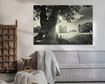 Schloss Doornenburg Niederlande in schwarz und weiß von Hilda Weges
