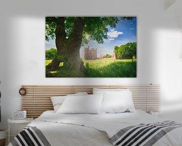 Sfeervol landschap Kasteel Doornenburg