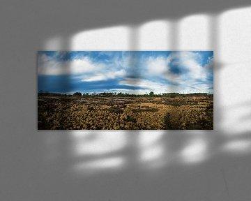 Strabrechtse heide (panorama) van Noud de Greef