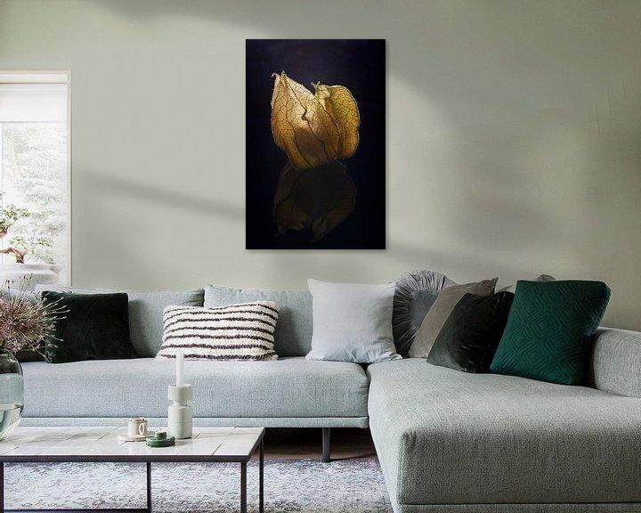 Beispiel: Kapstachelbeere von Cor de Hamer