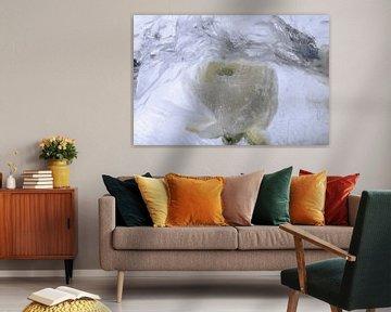 Weiße Ranunkel in Eis 4 von Marc Heiligenstein