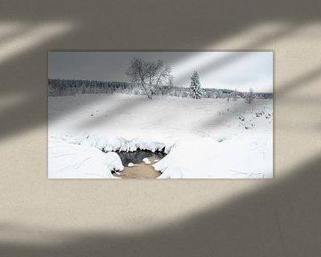 Winters Landschap van Hans Dikken
