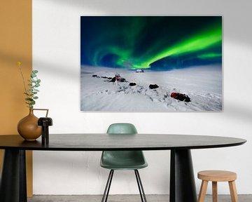 Noorderlicht (aurora borealis) met huskies in de sneeuw van Martijn Smeets