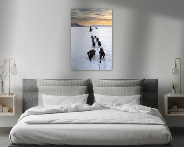 Husky sledeteams over bevroren meer met zonsondergang van Martijn Smeets