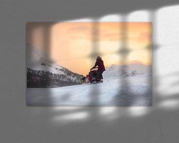 Husky slee over besneeuwde bergpas met zonsopkomst