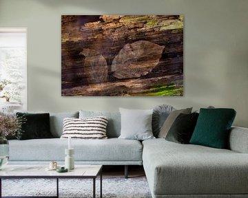 Nature-Art 004 van Henk Elshout