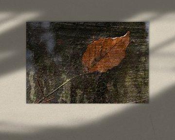 Natur-Kunst 008 von Henk Elshout