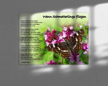 Wenn Schmetterlinge fliegen von Norbert Hergl