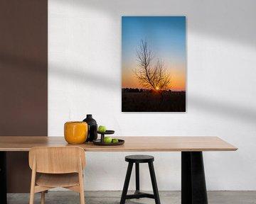 Farbe des Morgens von Margo Lammers
