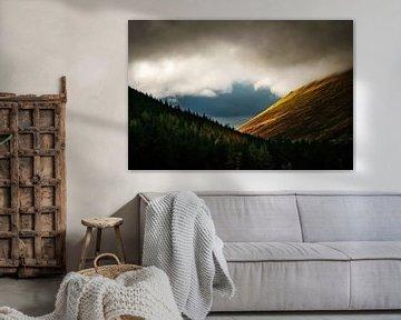Montagnes et arbres en Écosse - Parc national des Cairngorms sur RUUDC Fotografie