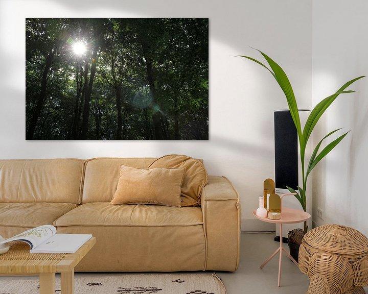 Beispiel: Sonne durch die Bäume von Sander de Jong