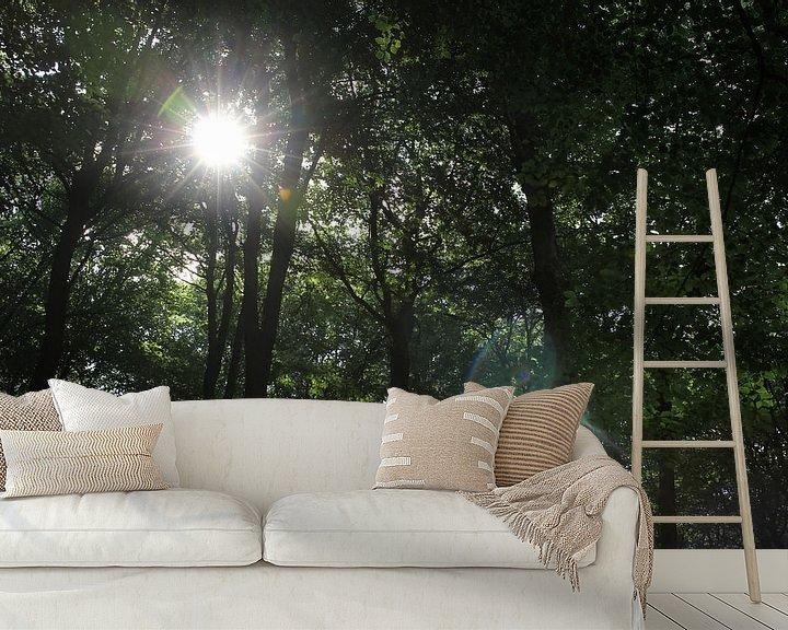 Beispiel fototapete: Sonne durch die Bäume von Sander de Jong