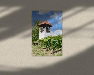 Wijngaardstorm in Rheinhessen van Peter Eckert
