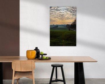 Kleurige zonsopgang op een mistige morgen tussen de weilanden in de herfst van Kim Willems