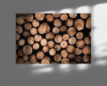 Opgestapelde boomstammen op de Veluwe (liggend) van Nanda van der Eijk