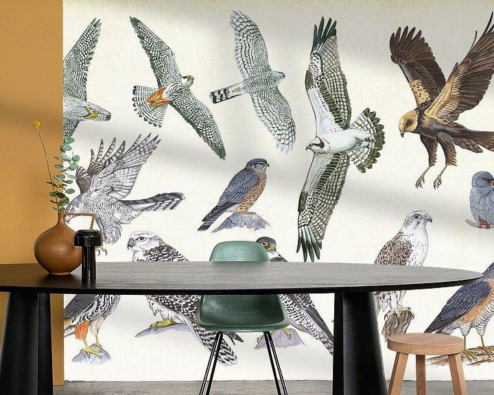 Sfeerimpressie behang: Roofvogels van Jasper de Ruiter
