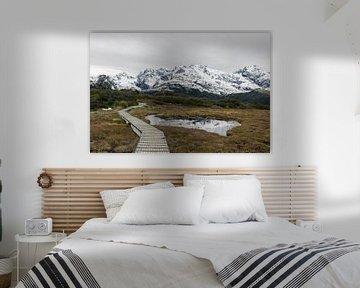 De bergen van Nieuw-Zeeland van Linda Schouw