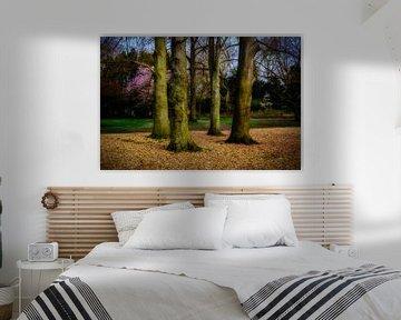 Bäume von Jan Bakker