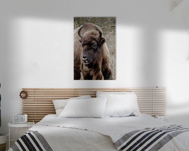 Sfeerimpressie: Europese bizon, wisent van Melissa Peltenburg