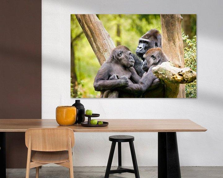 Sfeerimpressie: Gorilla van Visueelconcept