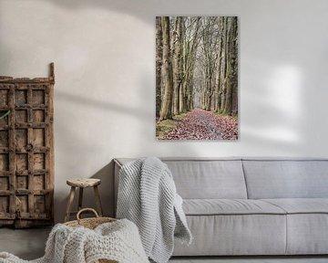 mossige bomenlaan van Tania Perneel