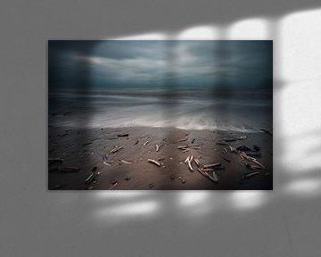 Schelpen in de golven op het strand van Arthur Scheltes