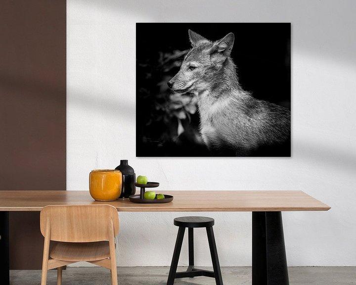 Impression: Animaux | loup sur Sylvana Portier