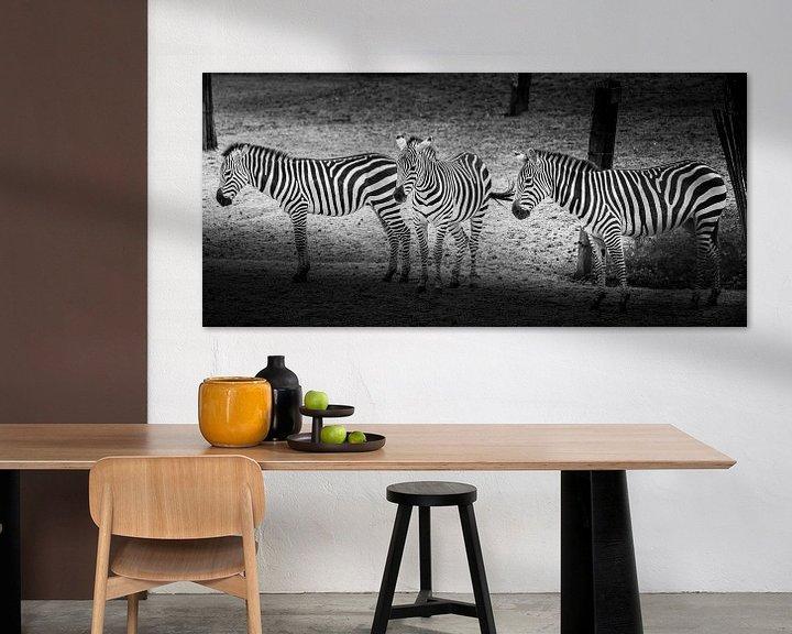 Beispiel: Tiere | Zebras von Sylvana Portier