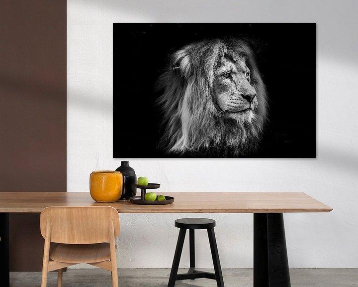 Beispiel: Tiere | Löwe von Sylvana Portier