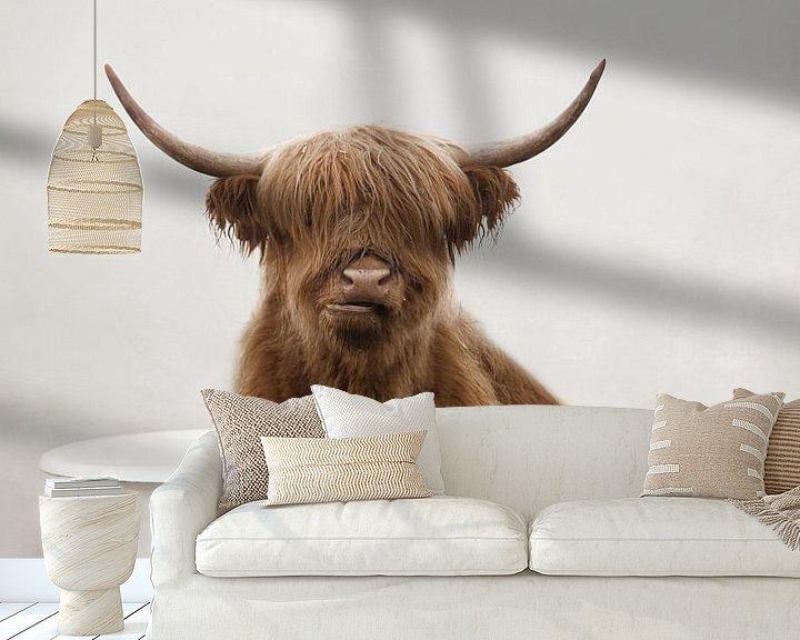 Impression: Drôle de Highlander écossais sur Diana van Tankeren